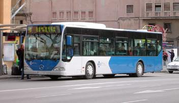 Excursie met bus Palma de Mallorca